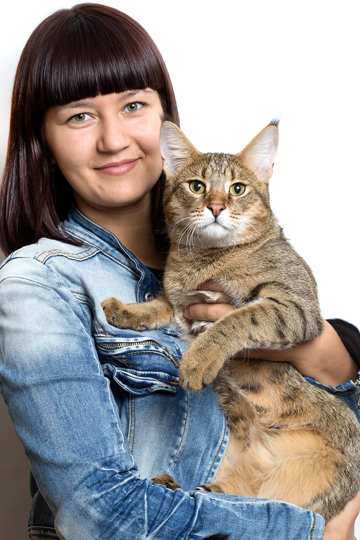Фото кошки чаузи