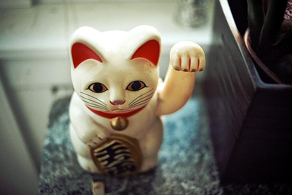 кошка ми-кей